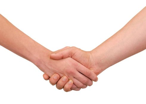 Handshake - isolated hands on white background