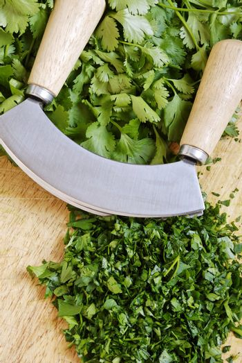 fresh and chopped herbs on cutting board with a mezzaluna