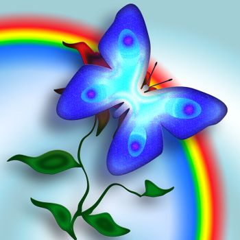 Butterfly and Rainbow