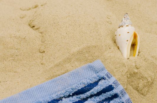 towel and shell