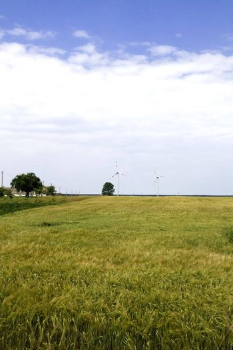 Wind turbine on field against blue sky background