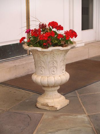 red flowers in an urn sitting on a porch