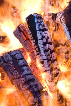 close-up firewood in orange fire