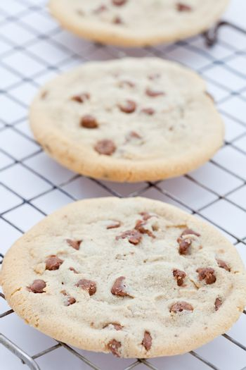 Line of three giant chocolate chip cookies
