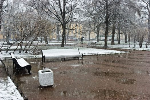 Winter storm at spring park, Saint Petersburg, Russia