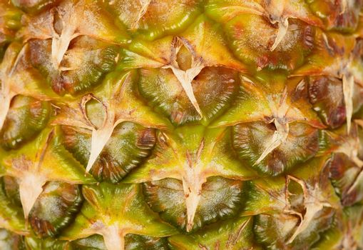Pattern of surface pineapple close-up