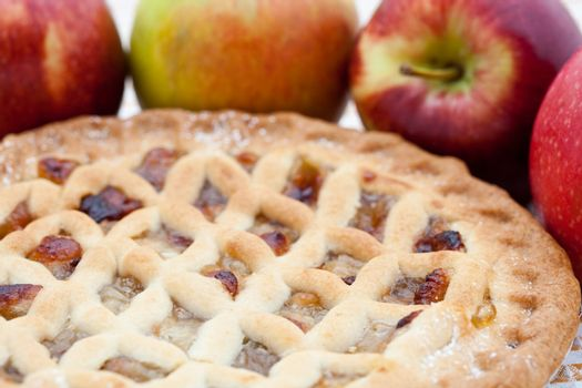 Freshly baked lattice apple pie