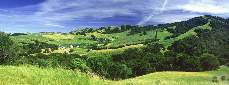 panoramic of farm and hills near the Russian River northern California green ranching cows animals trees grass rural scenic clouds blue valley