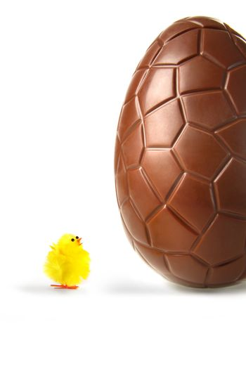Little easter chick looking up at chocolate egg