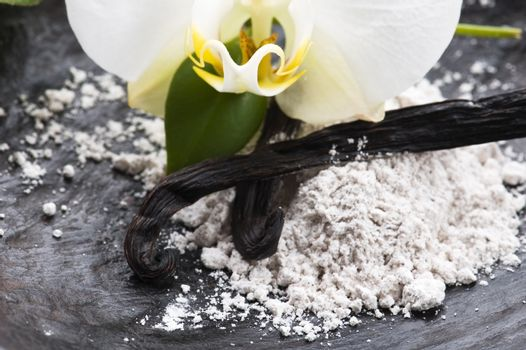 vanilla beans with aromatic sugar and flower