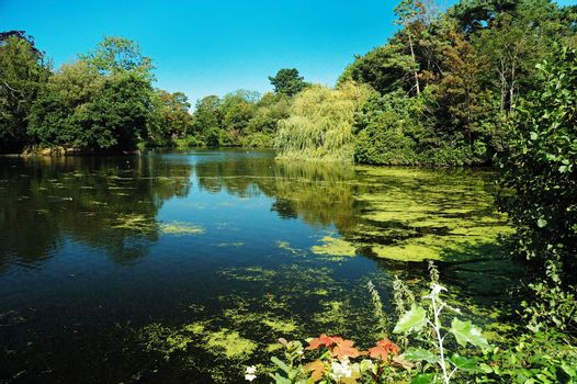 beautiful summer lake of Roath park in Cardiff