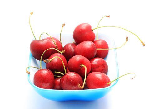 bowl of freshness