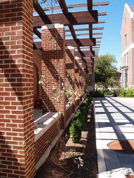 trellised walkway by a brick building