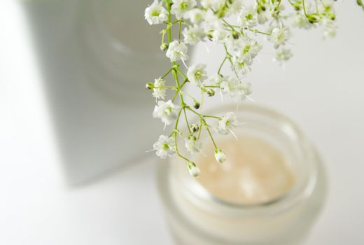 flowers and creme