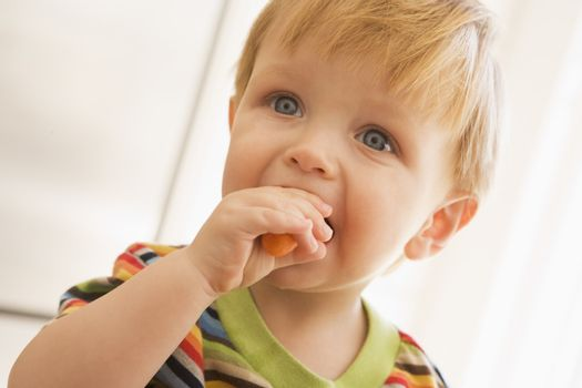 Young boy eating carrot indoors