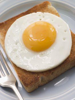 Fried Egg on White Toast