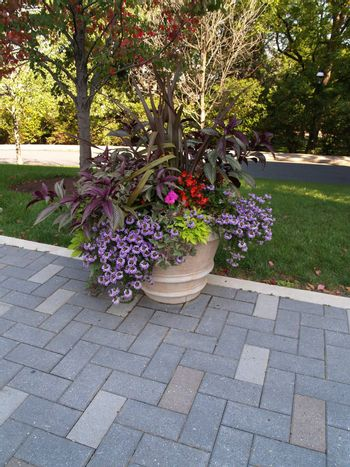 many flowers in an outdoor planter by a brick walkway