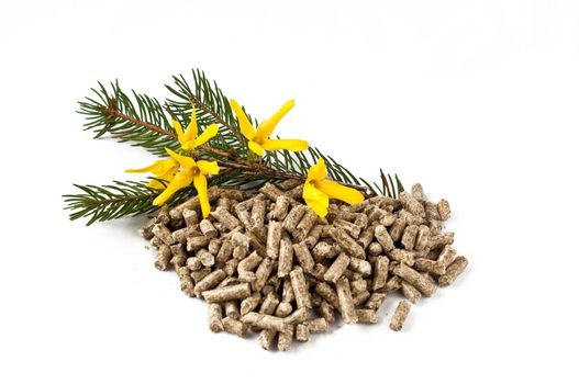 pellet, and spring flowers on a white background