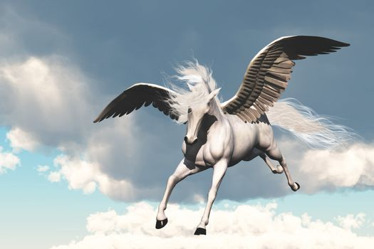 The creature of ancient fable and myth, a beautiful flying white horse.