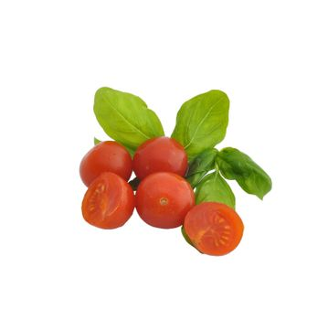 some tomatoes and basil leaves on a white background