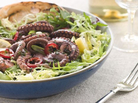 Baby Octopus Salad with Frisse Roquette and Chargrilled Bread