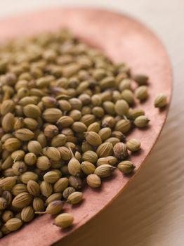 Dish of Coriander Seeds