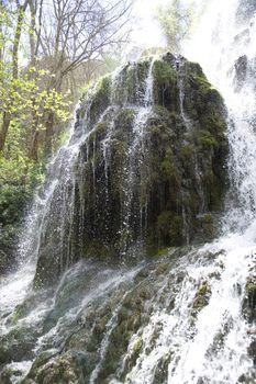 waterfall and moss