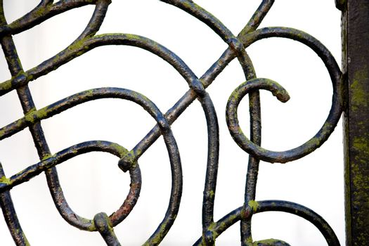 A wrought iron fence detail with slight moss covering