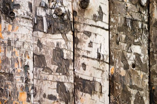 A wood slab texture background image