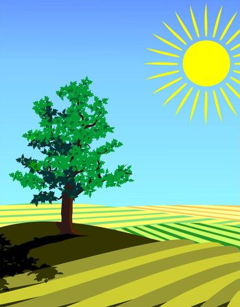four seasons illustration: summer single tree in the fields