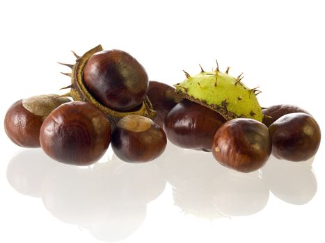 close-up of Chestnuts isolated on a white background