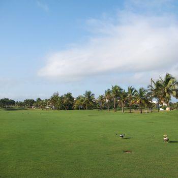 Golf resort in Dorado, Puerto Rico