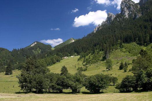 Beautiful pasture and mountains in Germany ( Allgäu ) Schöne Weide und Berge in Deutschland