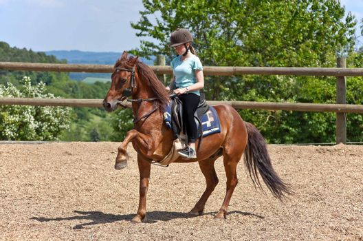Portrait from a riding girl
