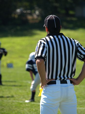 An American football referee on the field.