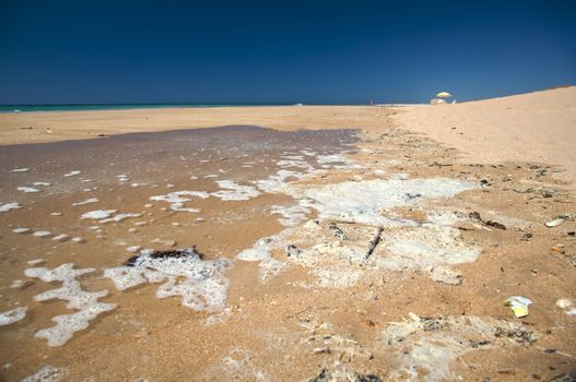 contamination beach