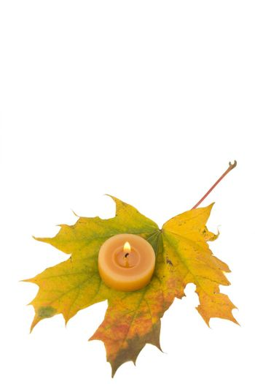 autumn maple leaf and tea light