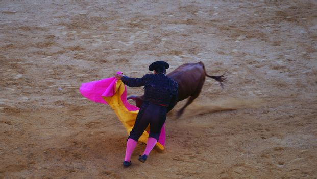 Traditional corrida bullfighting in spain