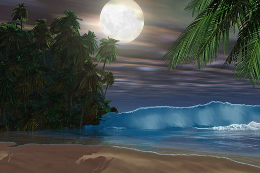 Moonlight shines down on this gorgeous beach during the night of the full moon.