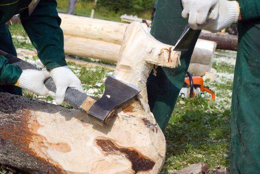 carpenter for work