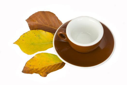 empty espresso cup with beech leaves in autumn