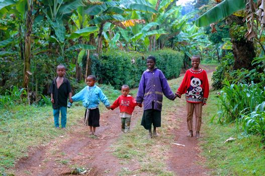 Happy african children are coming home, Tanzania