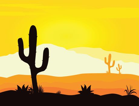 Mexico desert sunset with cactus plants silhouette and mountains