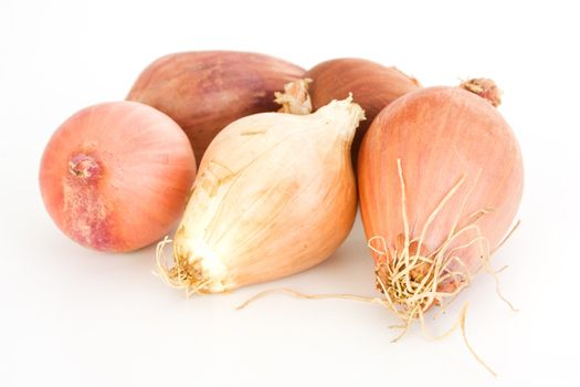 five shallots isolated on white background