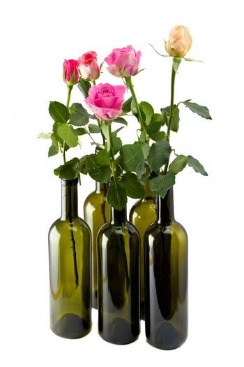 colorful roses in six empty wine bottles isolated on white background