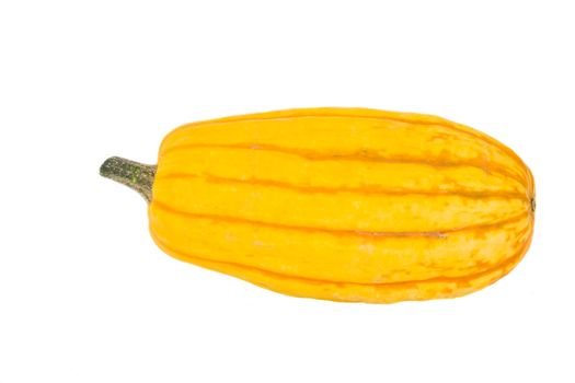 a pumpkin isolated on white background