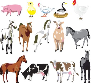 Vector Ilustration of 14 Farm Animals birds, and mammals.
