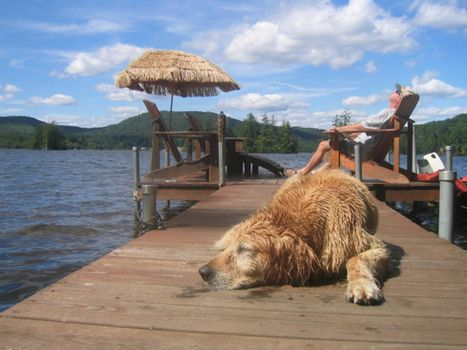 Lazy summer day with dog and owner sleeping on a dock on a Maine lake.