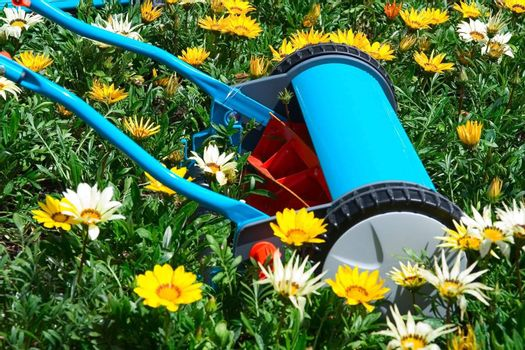 Manual mower in flowers, kind of environment concept