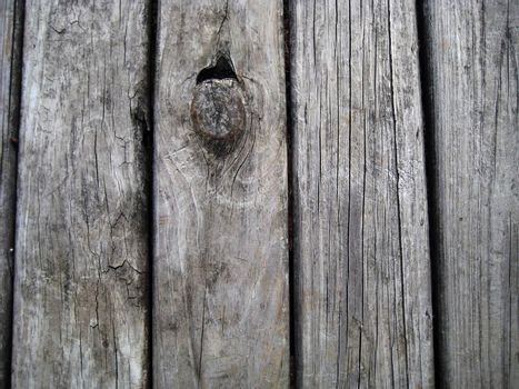 A weathered wooden plank background.
